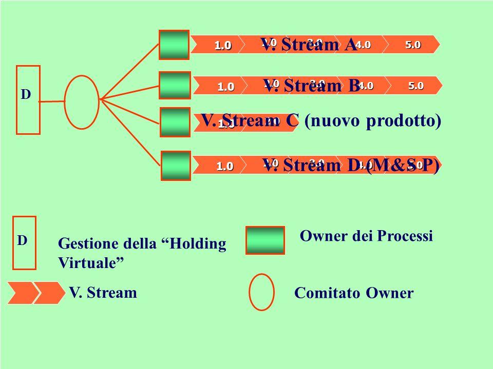 Il Gruppo dei Processi (VS estremo) ComitatoOwner Owner dei Processi D D Gestione della Holding Virtuale 1.0 2.03.0 4.05.0 V. Stream A V. Stream 1.0 2