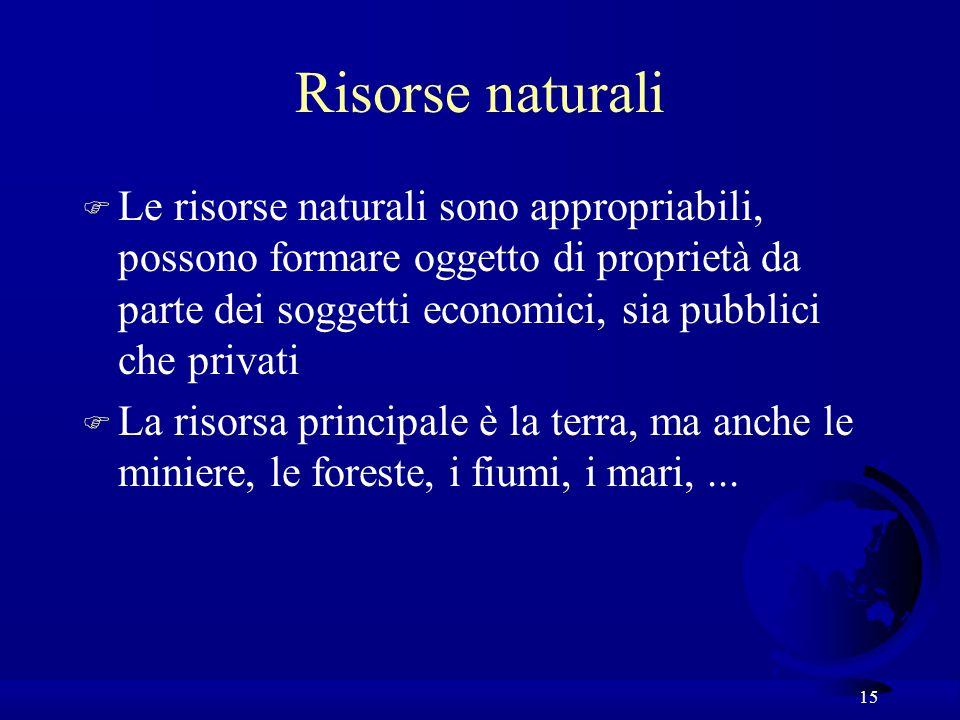 15 Risorse naturali F Le risorse naturali sono appropriabili, possono formare oggetto di proprietà da parte dei soggetti economici, sia pubblici che privati F La risorsa principale è la terra, ma anche le miniere, le foreste, i fiumi, i mari,...