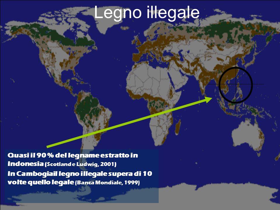 Legno illegale Circa il 50 % del legno estratto in Camerun è di provenienza illegale (ITTO 2001).