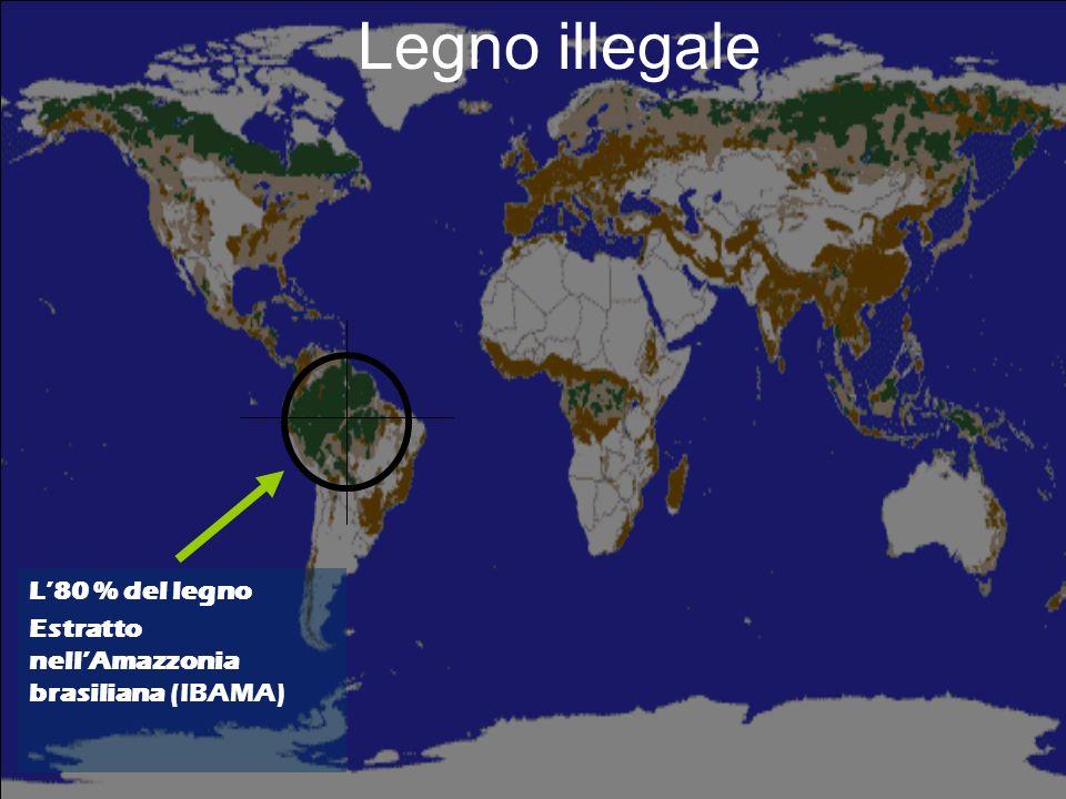 Legno illegale Quasi il 90 % del legname estratto in Indonesia (Scotland e Ludwig, 2001) In Cambogiail legno illegale supera di 10 volte quello legale (Banca Mondiale, 1999)