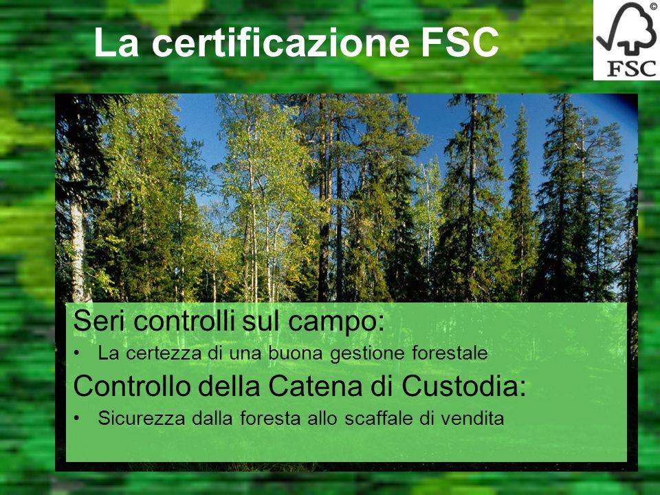 Futuro per il legno Futuro per le foreste