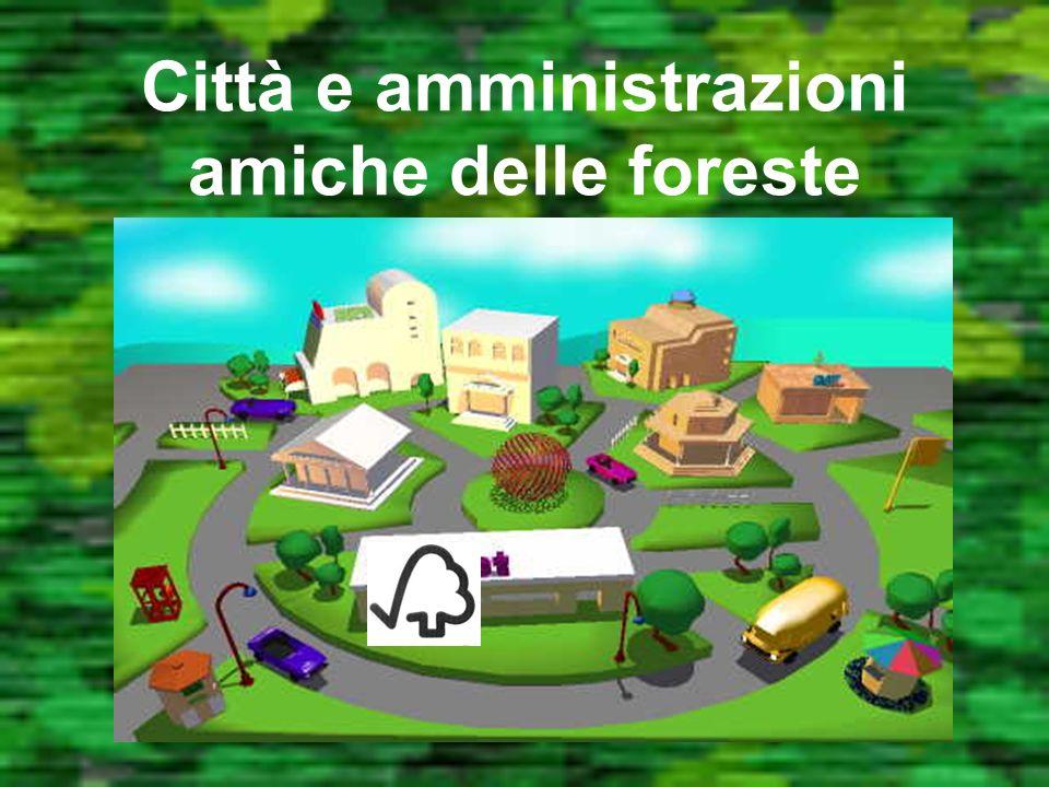 La certificazione FSC Trasparenza: Ogni decisione e documento è disponibile Sicurezza dalla foresta allo scaffale di vendita