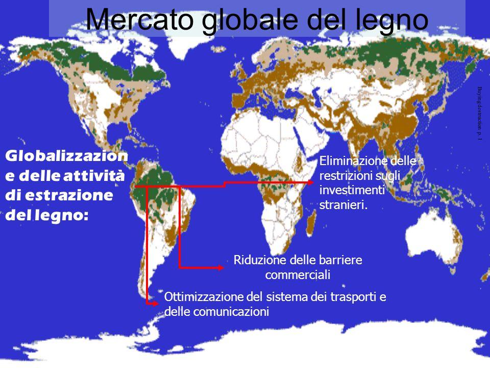 Douglas& Blaser, Buying destruction p. 19 Mercato globale del legno il Bacino del Congo e lAmazzonia In seguito allerosione delle foreste asiatiche, i