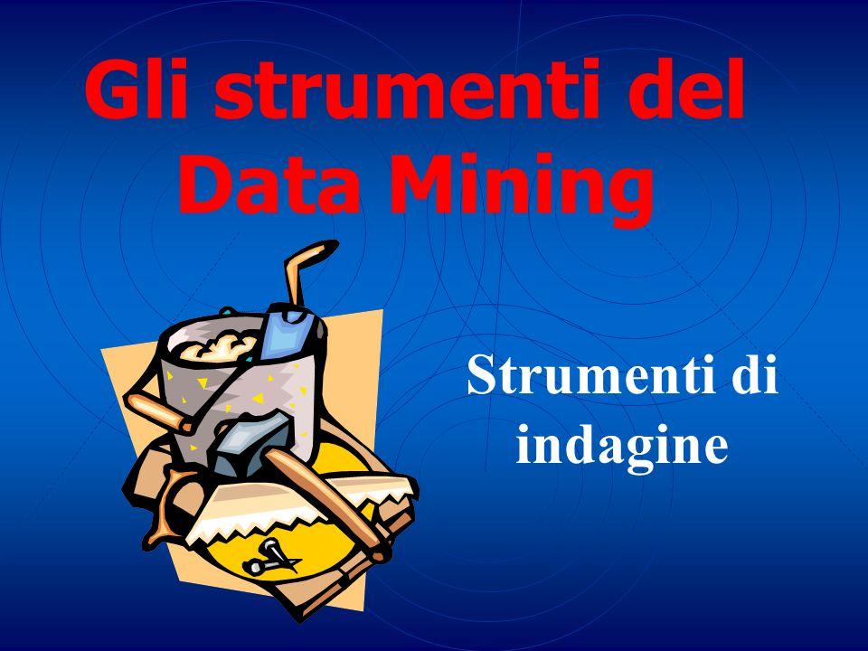 Gli strumenti del Data Mining Strumenti di indagine