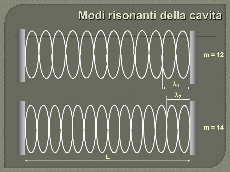 m = 12 m = 14 1 L 2