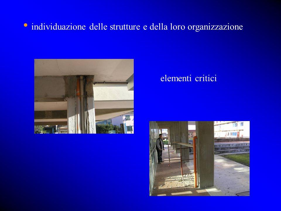 individuazione delle strutture e della loro organizzazione elementi critici