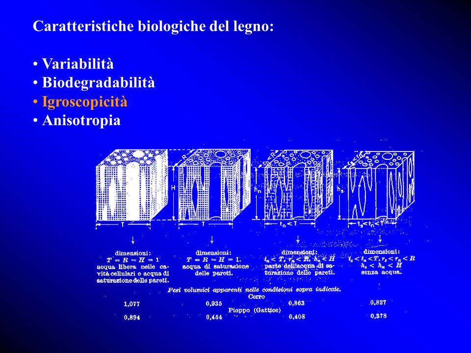Caratteristiche biologiche del legno: Variabilità Biodegradabilità Igroscopicità Anisotropia