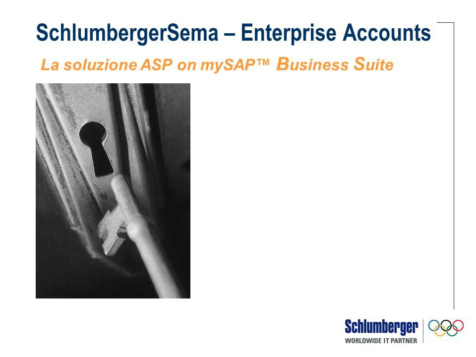 La Gestione del Continuo SchlumbergerSema garantisce la gestione del continuo mediante le seguenti componenti del servizio: Garanzia del corretto funzionamento del sistema (Bug Fixing) Supporto applicativo How to Use e How to Do (Application Support) Levoluzione del Template sulla base delle esigenze di business, del Cliente e del mercato (New Developments) Assistenza e monitoraggio dellambiente SAP, della funzionalità degli elaboratori e del back up dei dati (System Management)