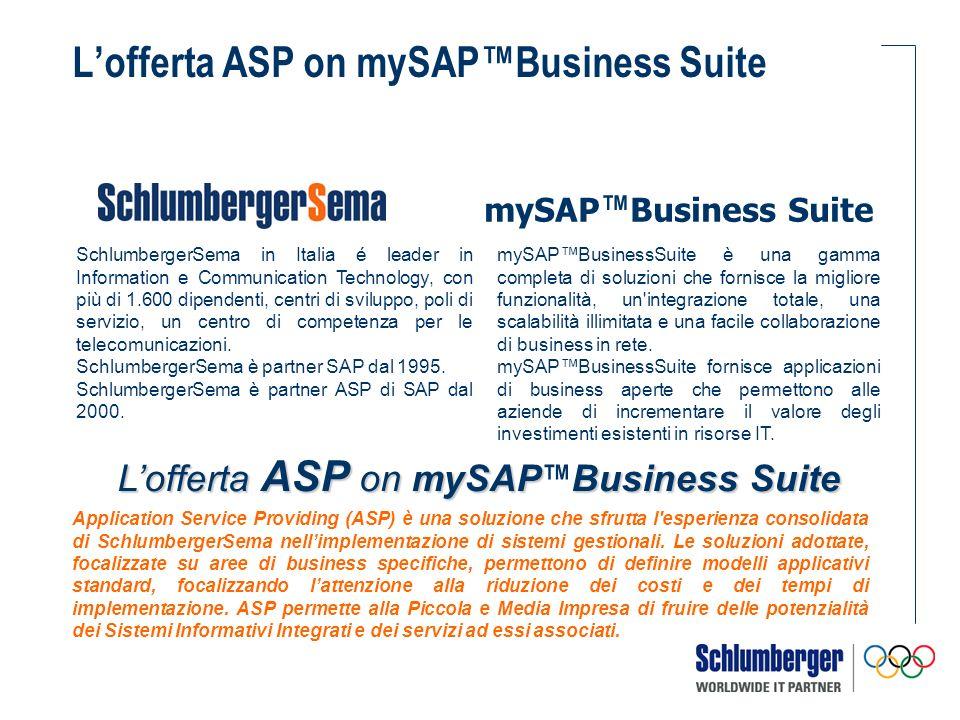 I servizi aggiuntivi è predisposta per essere espansa Lofferta ASP on mySAPBusiness Suite di SchlumbergerSema è predisposta per essere espansa con ulteriori funzionalità/attività rese possibili dalle competenze dei professionisti SchlumbergerSema.