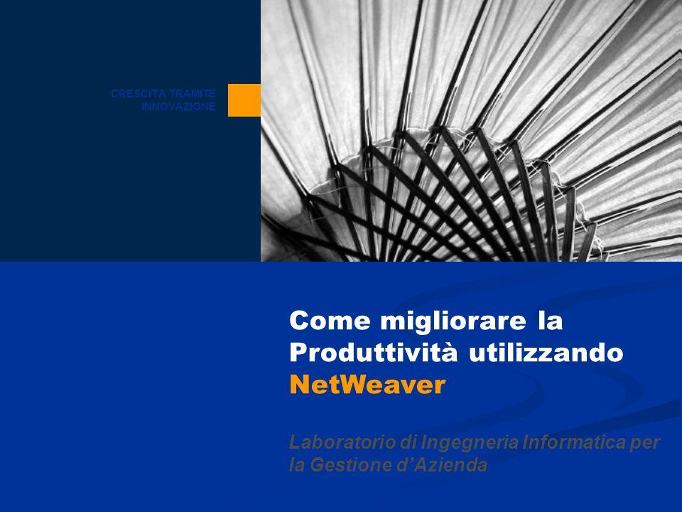 CRESCITA TRAMITE INNOVAZIONE Come migliorare la Produttività utilizzando NetWeaver Laboratorio di Ingegneria Informatica per la Gestione dAzienda