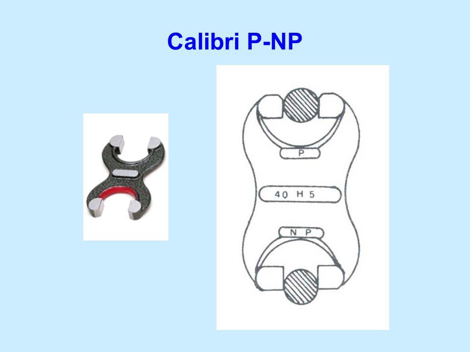 Calibri P-NP