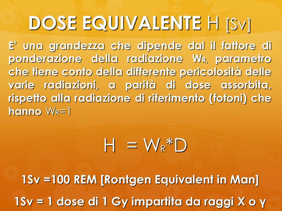 DOSE EQUIVALENTE H [Sv] H = W R *D E una grandezza che dipende dal il fattore di ponderazione della radiazione W R, parametro che tiene conto della di