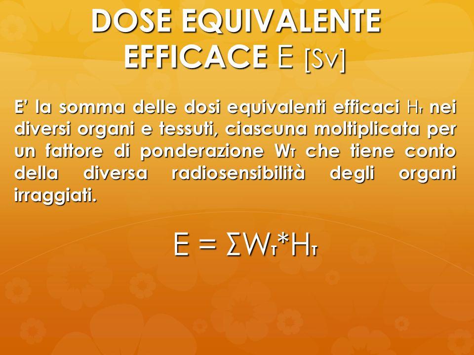 DOSE EQUIVALENTE EFFICACE E [Sv] E = ΣW T *H T E la somma delle dosi equivalenti efficaci H T nei diversi organi e tessuti, ciascuna moltiplicata per