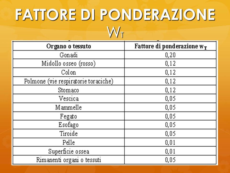 FATTORE DI PONDERAZIONE W T