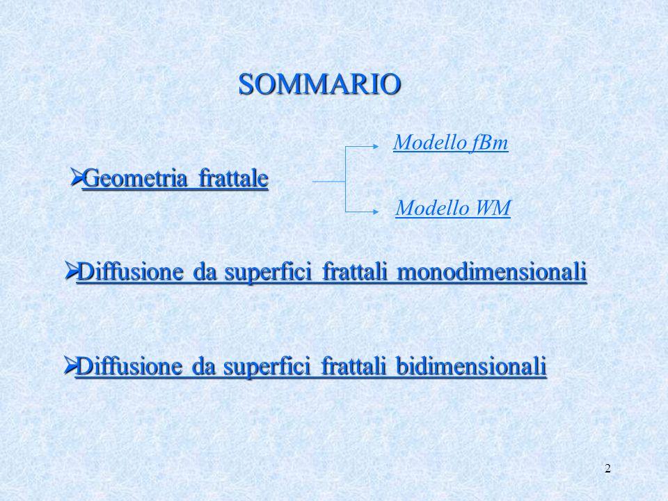 2 SOMMARIO Diffusione da superfici frattali monodimensionali Diffusione da superfici frattali monodimensionali Diffusione da superfici frattali bidime
