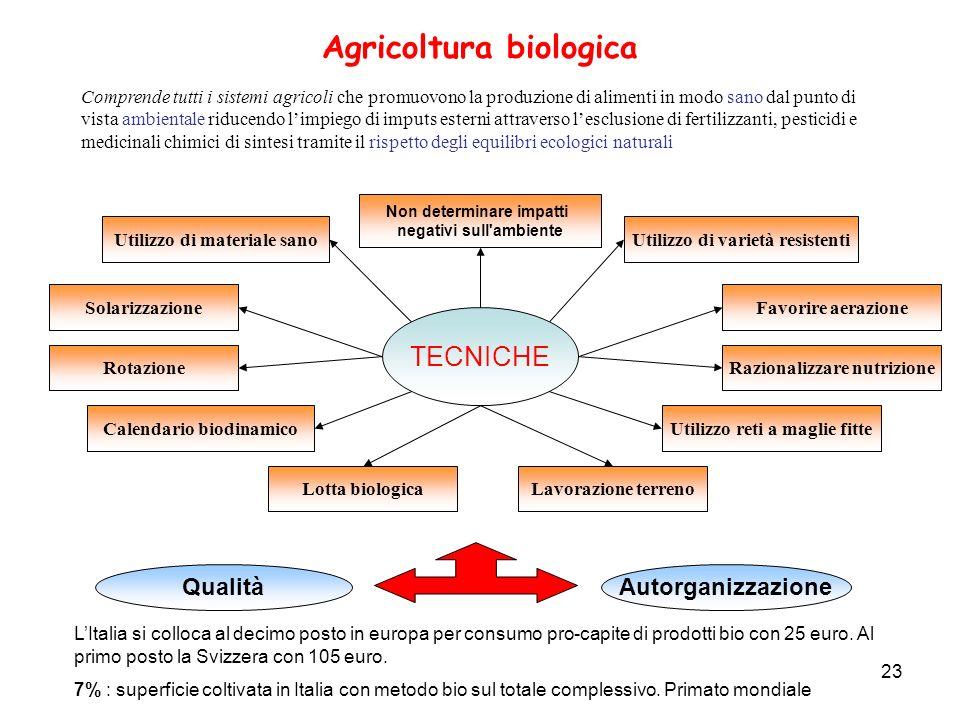 23 Agricoltura biologica TECNICHE Solarizzazione Lavorazione terreno Utilizzo di materiale sano Rotazione Lotta biologica Utilizzo reti a maglie fitte