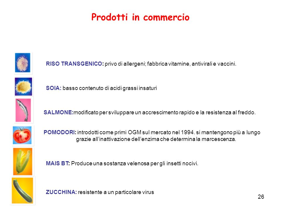 26 Prodotti in commercio SALMONE:modificato per sviluppare un accrescimento rapido e la resistenza al freddo. POMODORI: introdotti come primi OGM sul