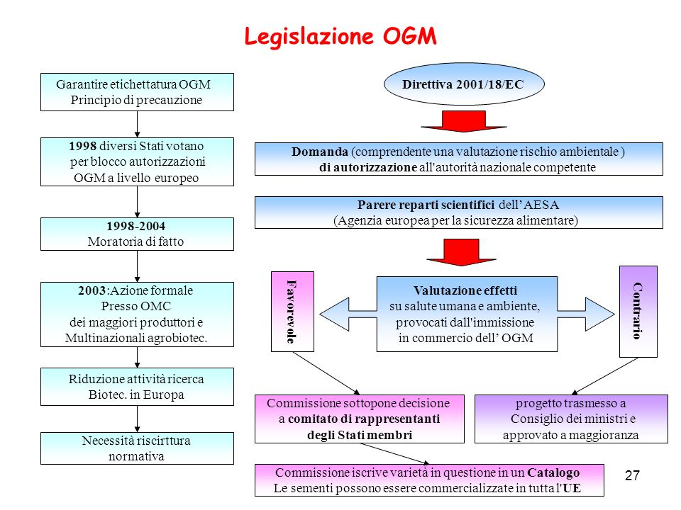 27 Legislazione OGM 1998 diversi Stati votano per blocco autorizzazioni OGM a livello europeo Garantire etichettatura OGM Principio di precauzione 199