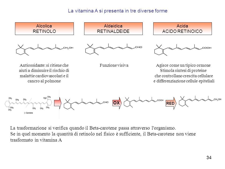 34 La trasformazione si verifica quando il Beta-carotene passa attraverso l'organismo. Se in quel momento la quantità di retinolo nel fisico è suffici