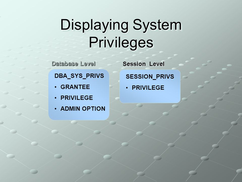 Displaying System Privileges DBA_SYS_PRIVS GRANTEE PRIVILEGE ADMIN OPTION SESSION_PRIVS PRIVILEGE Database Level Session Level