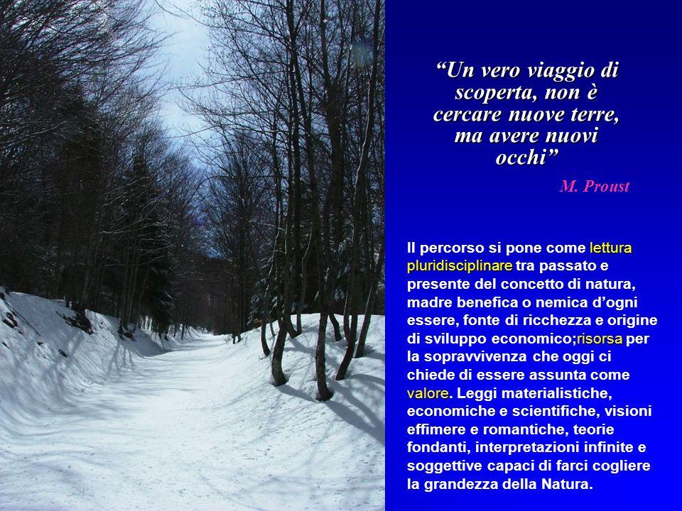 Un vero viaggio di scoperta, non è cercare nuove terre, ma avere nuovi occhi M. Proust lettura pluridisciplinare risorsa valore Il percorso si pone co