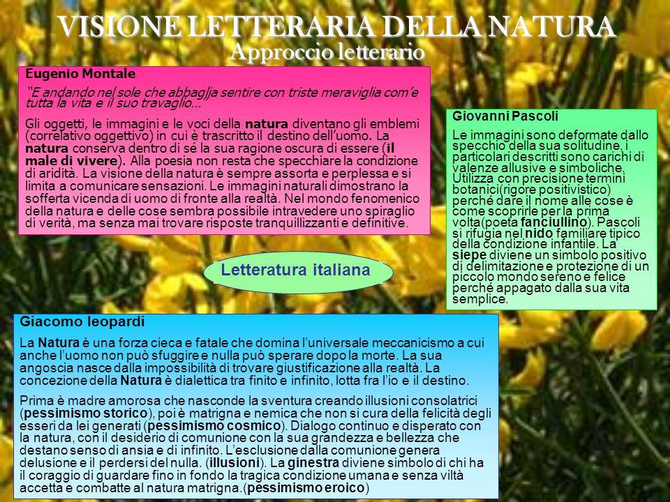 VISIONE LETTERARIA DELLA NATURA Approccio letterario Letteratura italiana Eugenio Montale E andando nel sole che abbaglia sentire con triste meravigli
