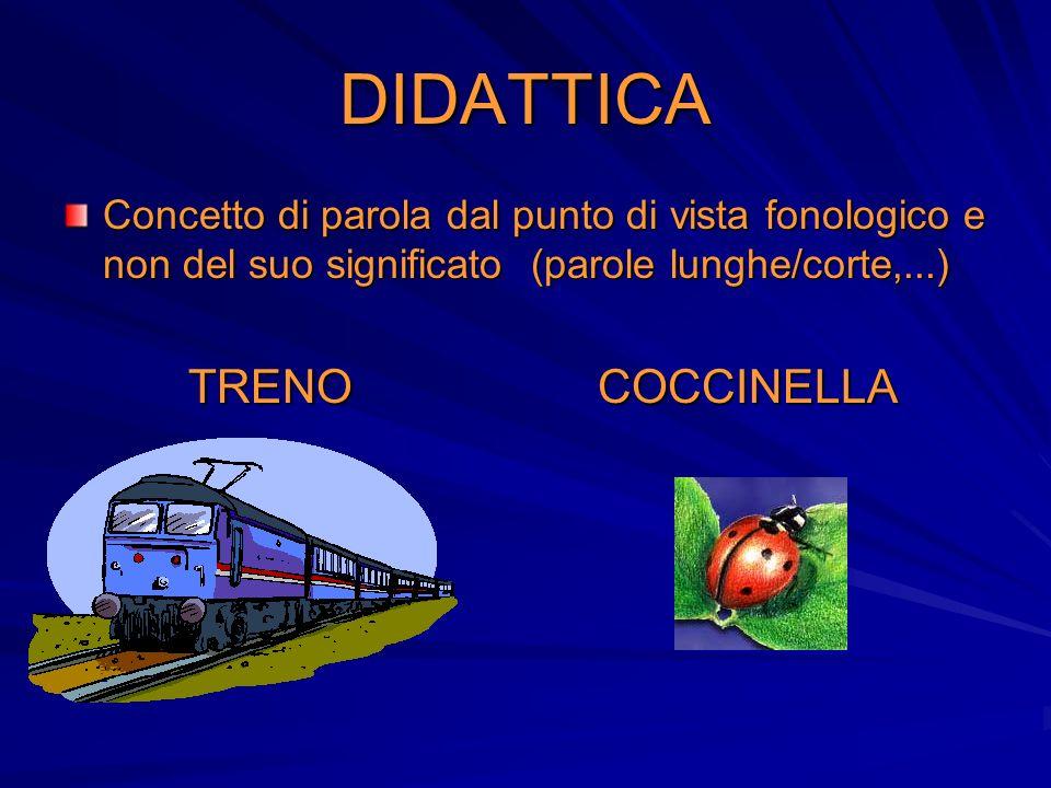 DIDATTICA Concetto di parola dal punto di vista fonologico e non del suo significato (parole lunghe/corte,...) TRENO COCCINELLA TRENO COCCINELLA