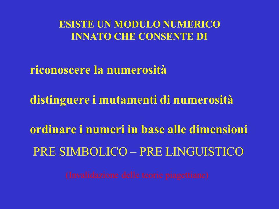 ESISTE UN MODULO NUMERICO INNATO CHE CONSENTE DI riconoscere la numerosità distinguere i mutamenti di numerosità ordinare i numeri in base alle dimens