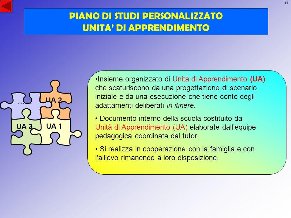 14 UA 2 UA 1 UA 3 …… PIANO DI STUDI PERSONALIZZATO UNITA DI APPRENDIMENTO Insieme organizzato di Unità di Apprendimento (UA) che scaturiscono da una p