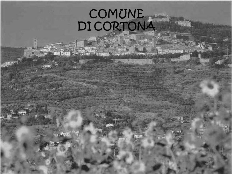 COMUNE DI CORTONA