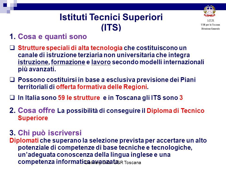 Istituti Tecnici Superiori (ITS) 1.Cosa e quanti sono Strutture speciali di alta tecnologia che costituiscono un canale di istruzione terziaria non un