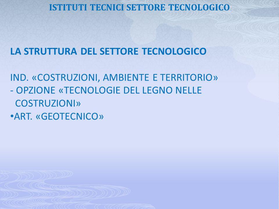 LA STRUTTURA DEL SETTORE TECNOLOGICO IND. «COSTRUZIONI, AMBIENTE E TERRITORIO» - OPZIONE «TECNOLOGIE DEL LEGNO NELLE COSTRUZIONI» ART. «GEOTECNICO» IS