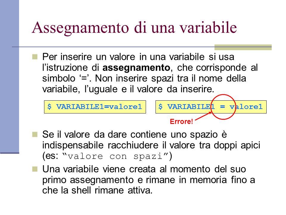 Assegnamento di una variabile Per inserire un valore in una variabile si usa listruzione di assegnamento, che corrisponde al simbolo =. Non inserire s