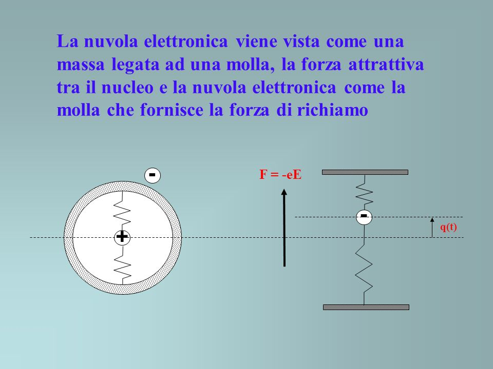 La nuvola elettronica viene vista come una massa legata ad una molla, la forza attrattiva tra il nucleo e la nuvola elettronica come la molla che forn