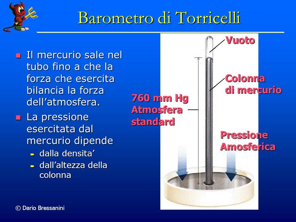 © Dario Bressanini Il mercurio sale nel tubo fino a che la forza che esercita bilancia la forza dellatmosfera.
