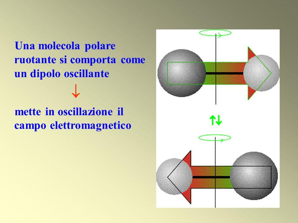 Una molecola polare ruotante si comporta come un dipolo oscillante mette in oscillazione il campo elettromagnetico