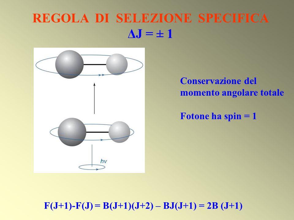 REGOLA DI SELEZIONE SPECIFICA ΔJ = ± 1 Conservazione del momento angolare totale Fotone ha spin = 1 F(J+1)-F(J) = B(J+1)(J+2) – BJ(J+1) = 2B (J+1)