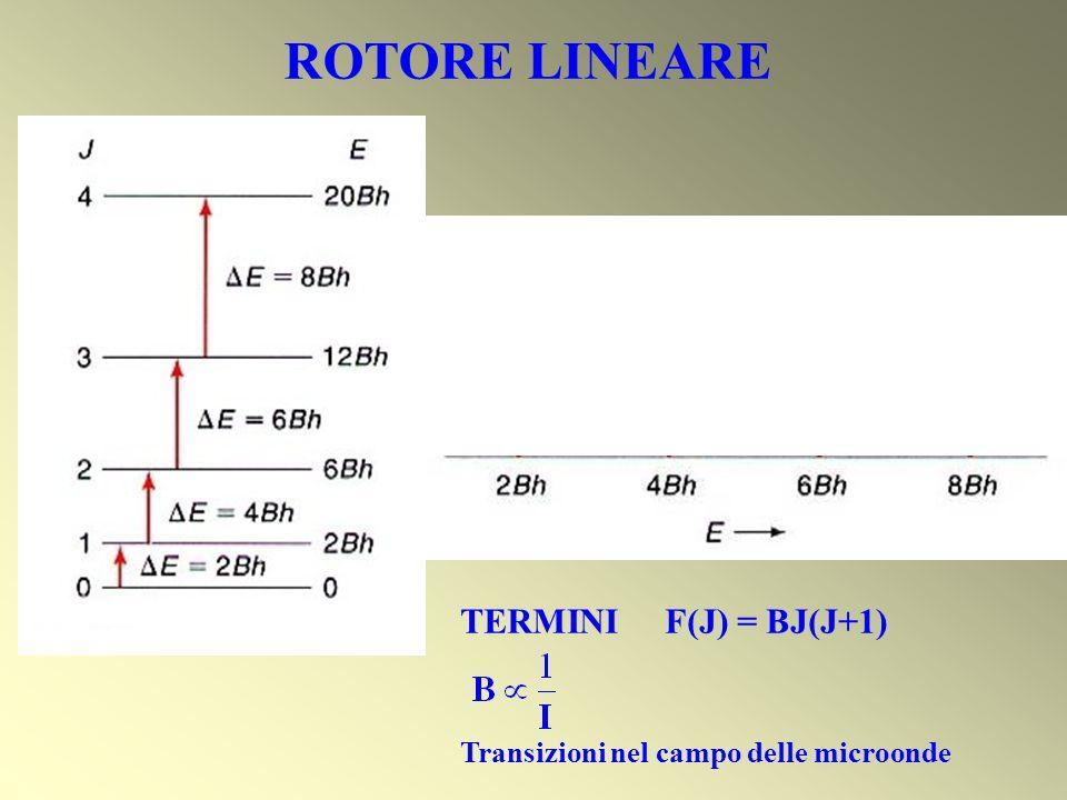 ROTORE LINEARE TERMINI F(J) = BJ(J+1) Transizioni nel campo delle microonde