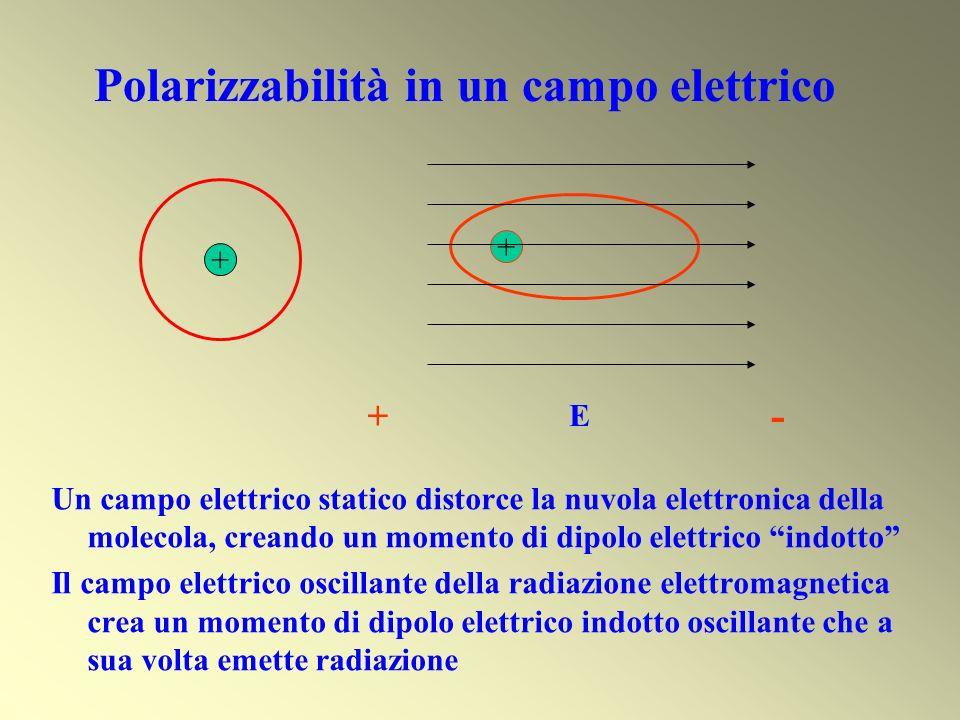 Polarizzabilità in un campo elettrico + + E + - Un campo elettrico statico distorce la nuvola elettronica della molecola, creando un momento di dipolo