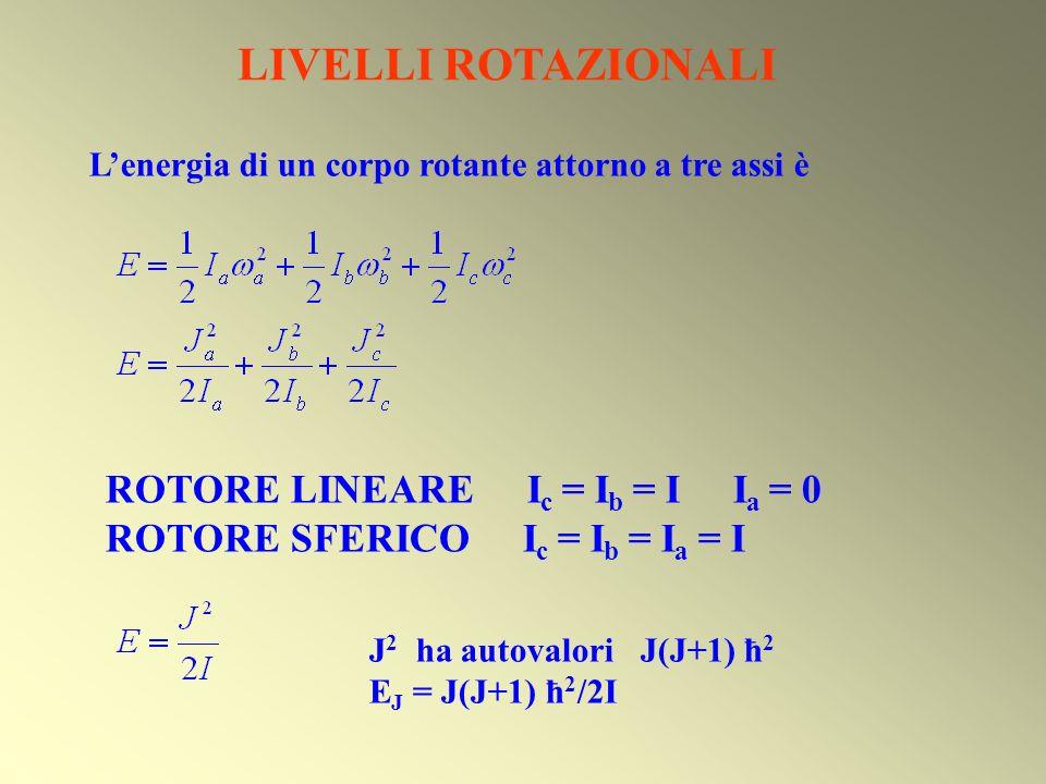 ROTORE LINEARE E ROTORE SFERICO Termini rotazionali F(J) = B J (J+1) J = 0, 1, 2, … M J = 0, ±1, ±2, …, ±J Ogni stato rotazionale è definito dalla combinazione di 2 numeri quantici (J, M J ).