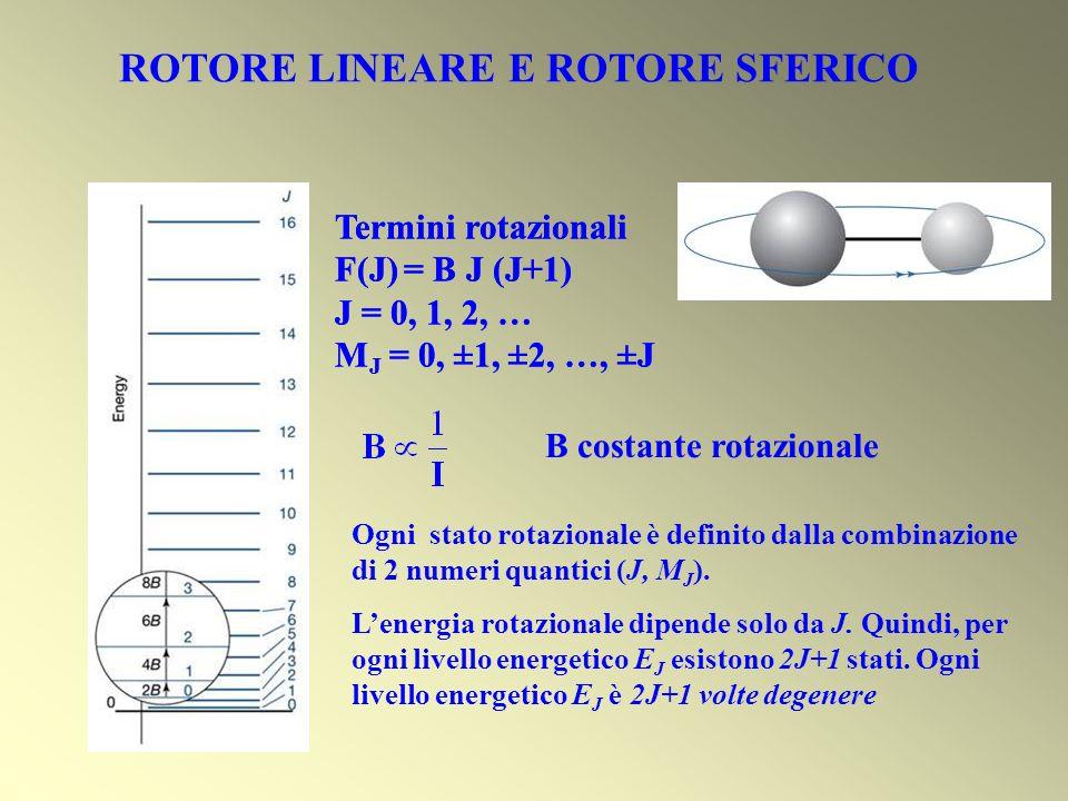 CH 3 Cl C 6 H 6 esiste un asse principale di inerzia I // con 2 assi perpendicolari I Se I // > I rotore oblato I // < I rotore prolato J 2 ha autovalori J(J+1) ħ 2 La componente lungo una direzione arbitraria ha valori Kħ con K = 0, 1, …, J ROTORE SIMMETRICO