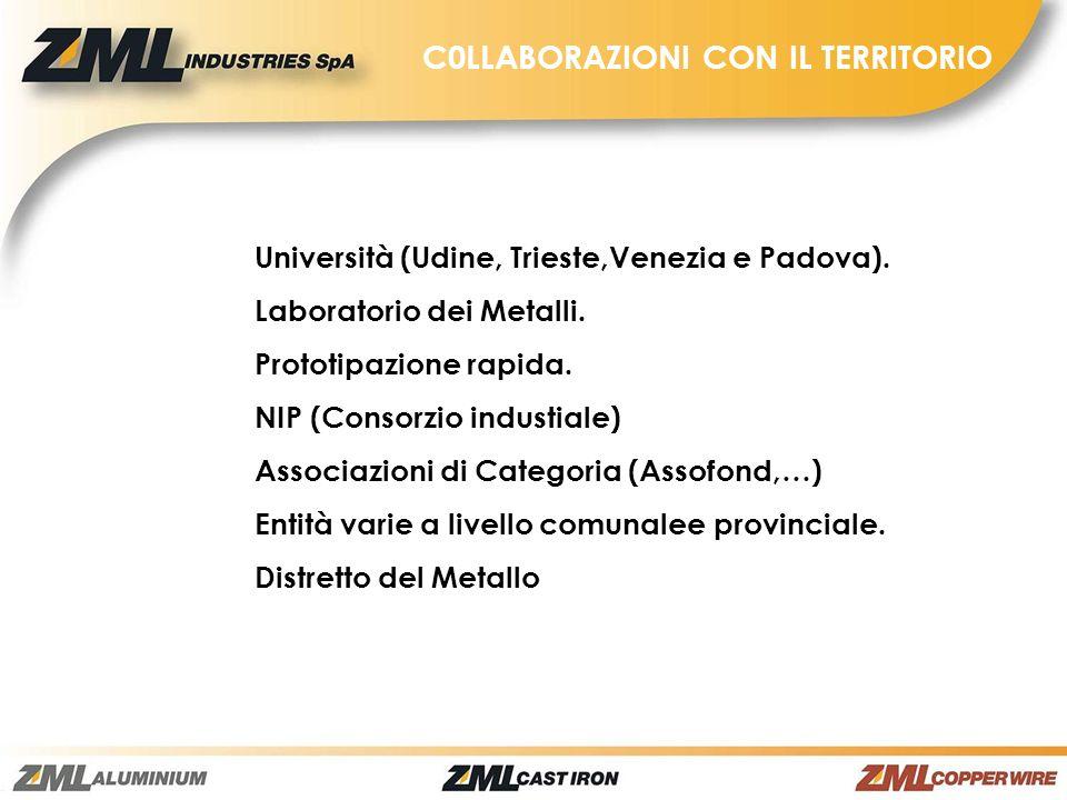 C0LLABORAZIONI CON IL TERRITORIO Università (Udine, Trieste,Venezia e Padova). Laboratorio dei Metalli. Prototipazione rapida. NIP (Consorzio industia