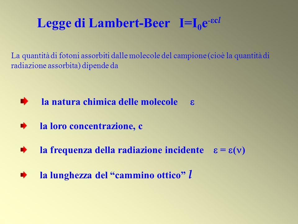 La quantità di fotoni assorbiti dalle molecole del campione (cioè la quantità di radiazione assorbita) dipende da Legge di Lambert-Beer I=I 0 e -εc l