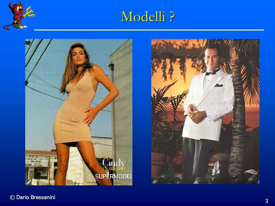 © Dario Bressanini 3 Modelli ?