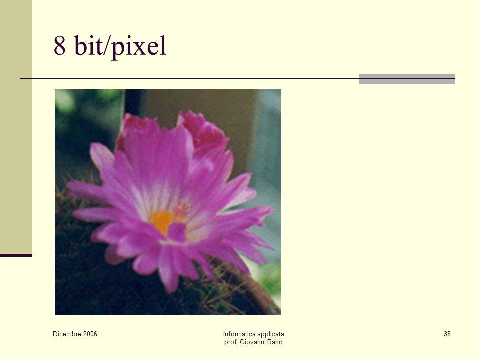 Dicembre 2006 Informatica applicata prof. Giovanni Raho 38 8 bit/pixel