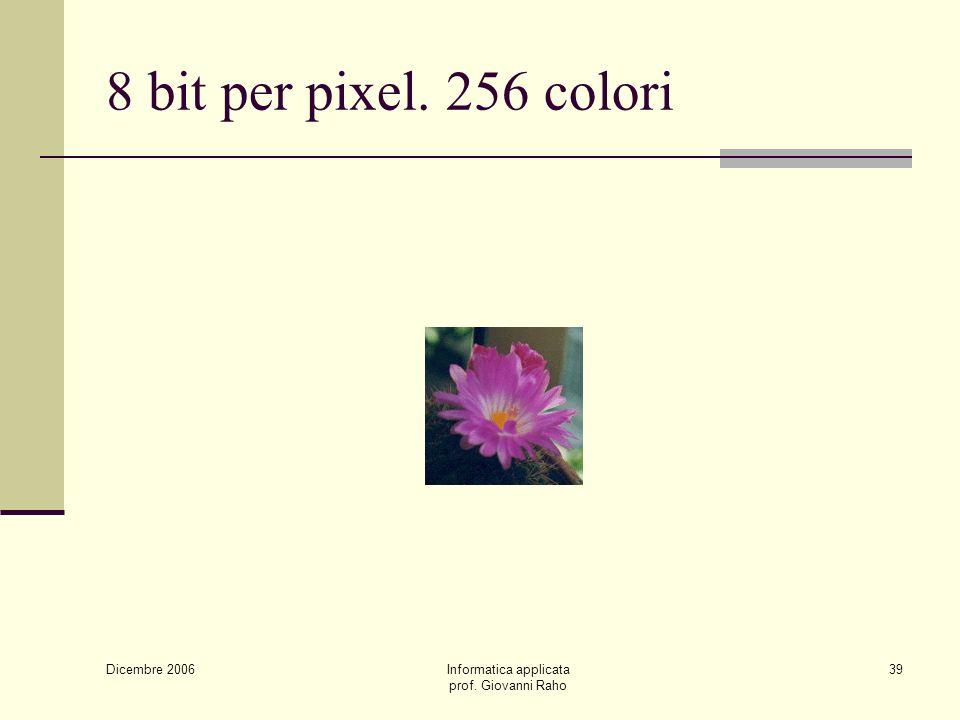 Dicembre 2006 Informatica applicata prof. Giovanni Raho 39 8 bit per pixel. 256 colori