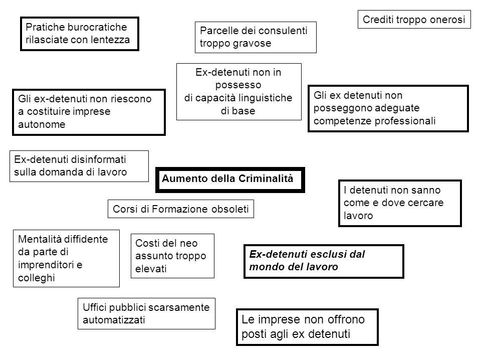 Ex-detenuti non in possesso di capacità linguistiche di base Ex-detenuti disinformati sulla domanda di lavoro Crediti troppo onerosi Ex-detenuti esclu