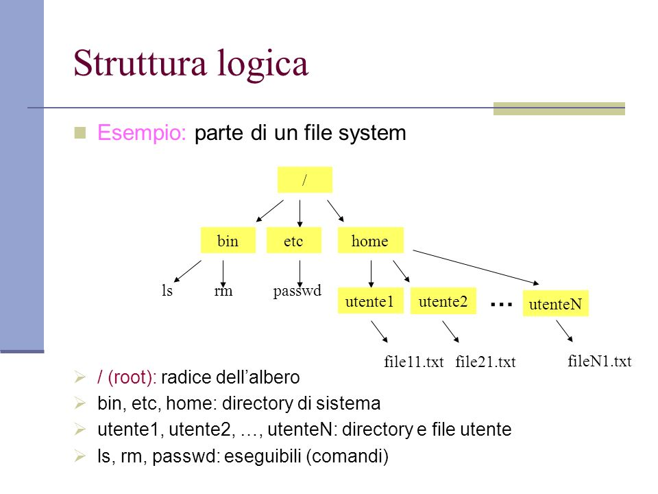 Struttura logica Esempio: parte di un file system / (root): radice dellalbero bin, etc, home: directory di sistema utente1, utente2, …, utenteN: directory e file utente ls, rm, passwd: eseguibili (comandi) / binetchome utente1 utente2 file21.txtfile11.txt lsrm passwd … utenteN fileN1.txt