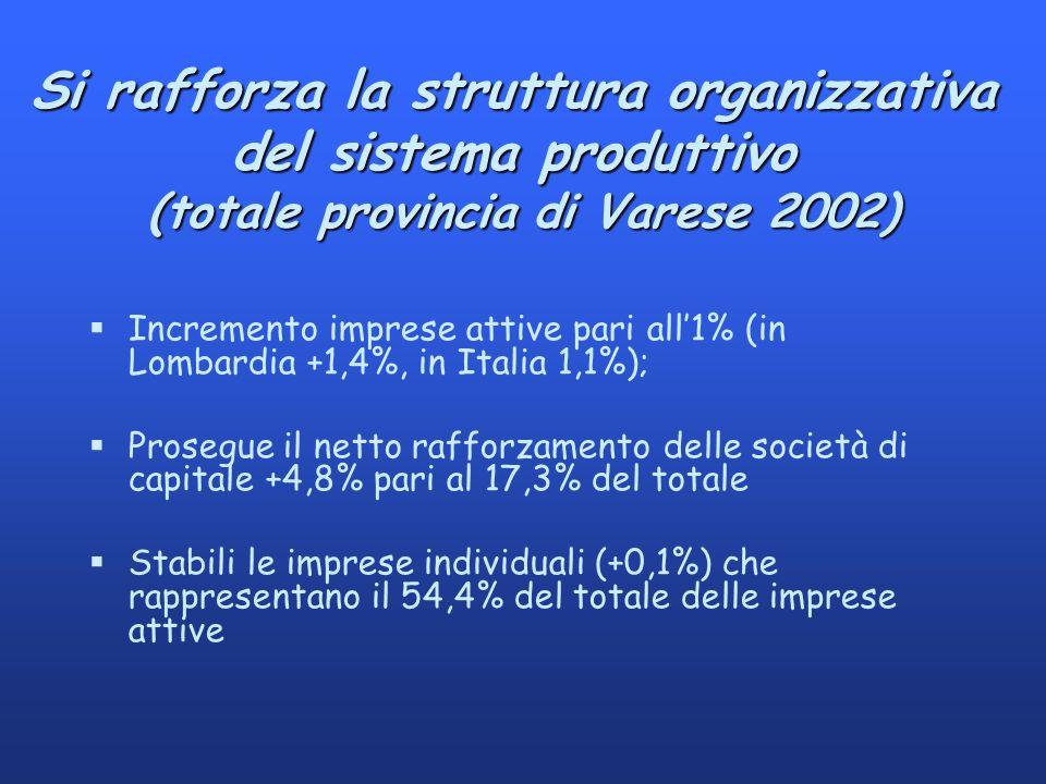 Si rafforza la struttura organizzativa del sistema produttivo (totale provincia di Varese 2002) §Incremento imprese attive pari all1% (in Lombardia +1,4%, in Italia 1,1%); §Prosegue il netto rafforzamento delle società di capitale +4,8% pari al 17,3% del totale §Stabili le imprese individuali (+0,1%) che rappresentano il 54,4% del totale delle imprese attive