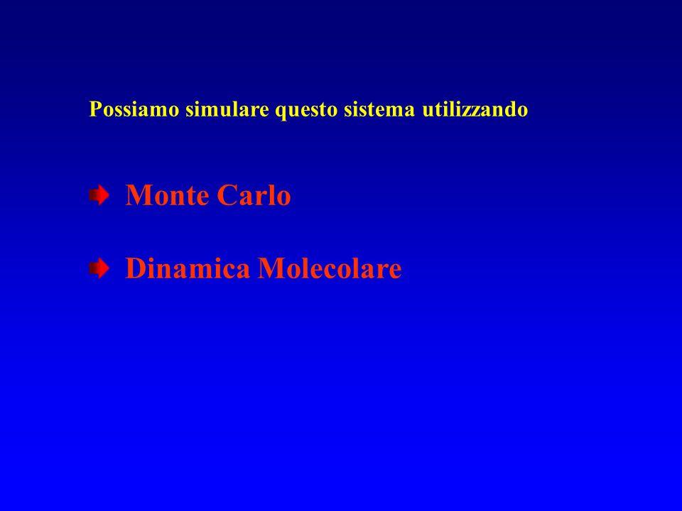 Possiamo simulare questo sistema utilizzando Monte Carlo Dinamica Molecolare